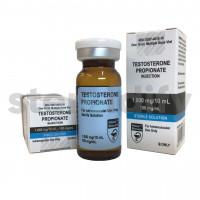 Steroidify Testosterone
